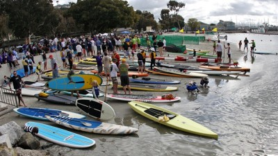 Dana Point Whale Festival