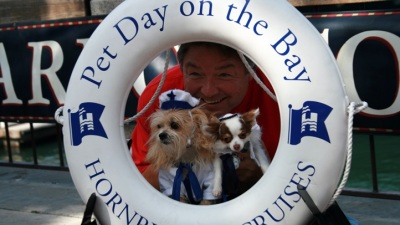 Pet Day on the Bay: Hounds at Sea