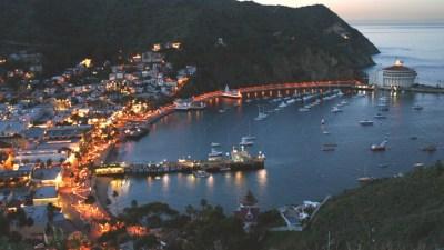 Ocean Christmas: A Very Catalina Season