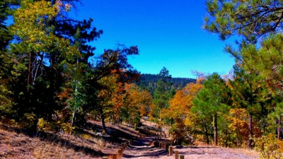 Fall Colors and Free Gas in Big Bear