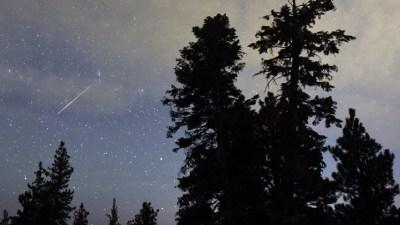 Nature by Night: Dark Sky Week