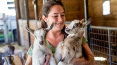 Sweet Sonoma County Farm Weekend