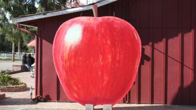 Julian's Juicy: Apple Days Festival