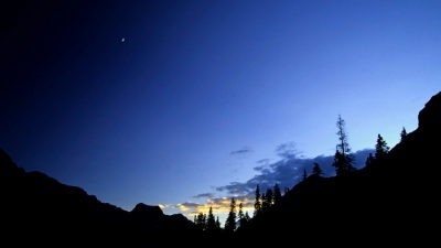 Sequoia Stars: Staring Out the Night Sky