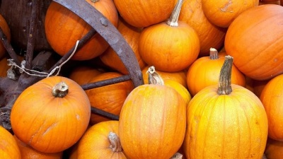 Pumpkin Parties, East and West