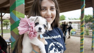 Puppy Prom: Dressy Fido Fundraiser