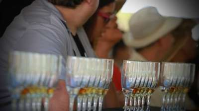 50+ Libations: Santa Barbara Tequila Harvest