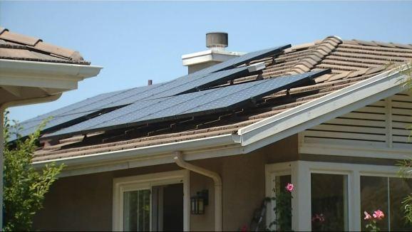 Oc Solar Panel Guinea Pigs Nbc Southern California