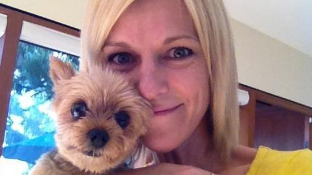 Dognapped Yorkie Found Safe Near Home