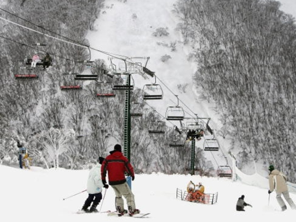 Investigation Prompts Introduction of Latest Ski Safety Bill