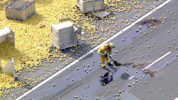 Lemons Litter Highway After Fatal Big Rig Crash