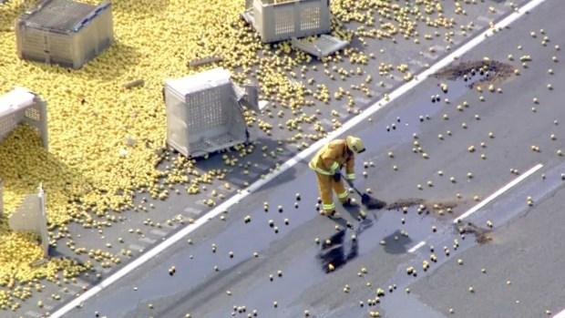 Lemons Litter Highway After Fatal Big Rig Crash