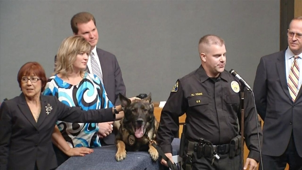 Police K-9 Bruno Officially Retires