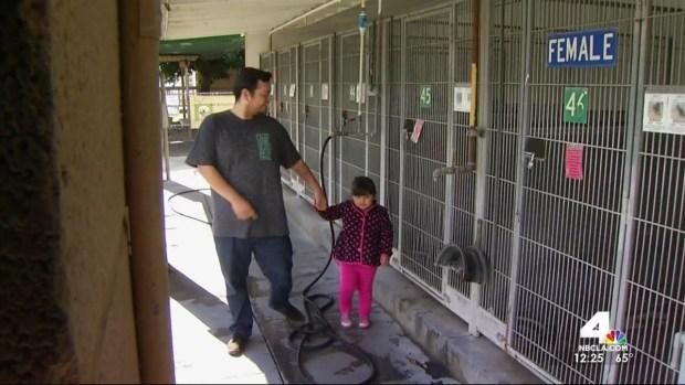[LA] Break-In Investigated at IE Animal Shelter