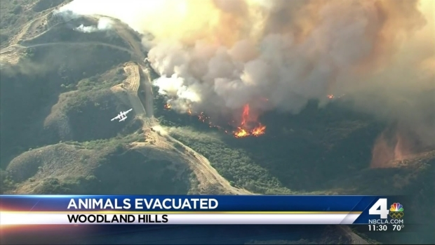[LA] Owners Claim Animals Evacuated After Calabasas Blaze