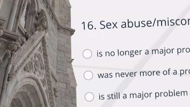 [NATL-NY] Catholic Church Employees Views on Abuse Revealed