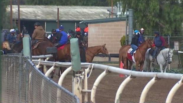 [LA] Changes Expected at Santa Anita Park After 22nd Horse Euthanized