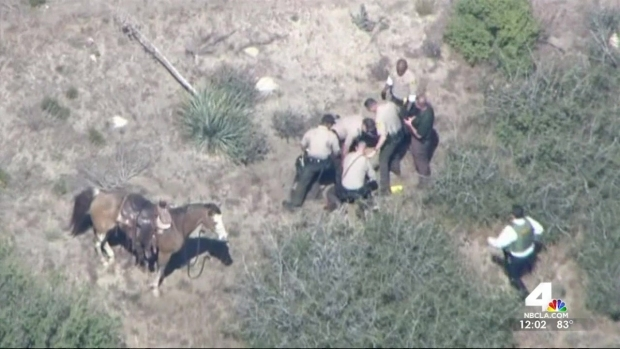[LA] Deputies Charged in Horseback Pursuit Beating
