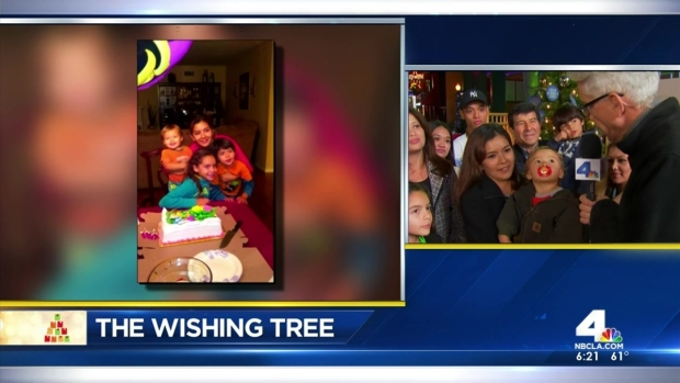 Wishing Tree: Wish Granted to Mother Battling Breast Cancer