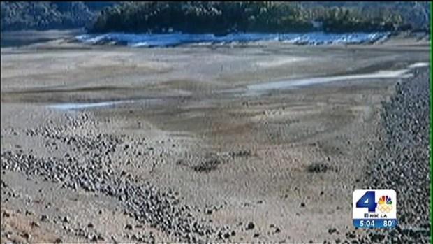 [LA] Gov. Brown Declares Drought