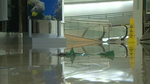 [BAY] RAW VIDEO: Water Main Burst at SJC