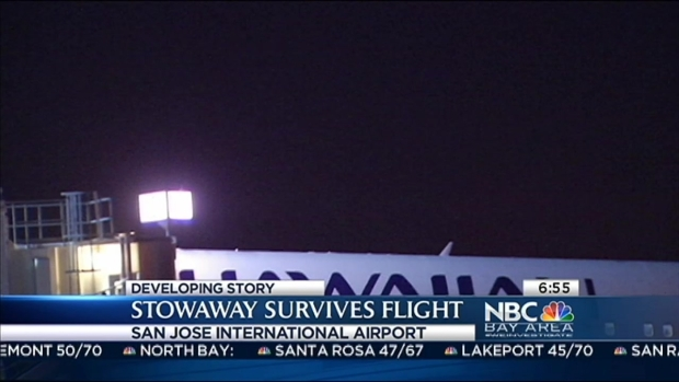 [BAY] Santa Clara Stowaway Survives Flight