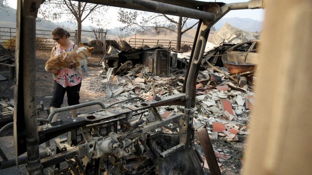 In Pictures: Kincade Fire Scorches Wineries, Homes in Sonoma County