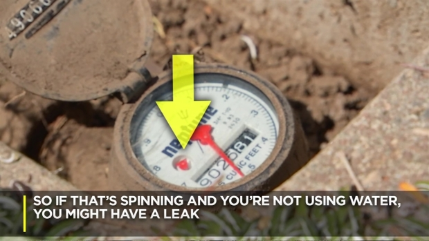 [LA] How to Check Your Water Meter for a Leak