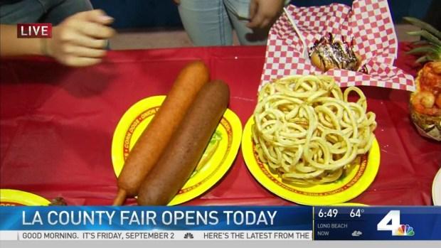 [LA] LA County Fair Opening