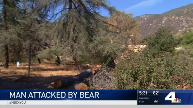 [LA] Man Fights Off Two Bears