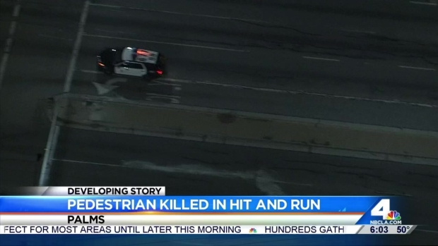 [LA] Man Killed in Hit-and-Run Collision in Palms