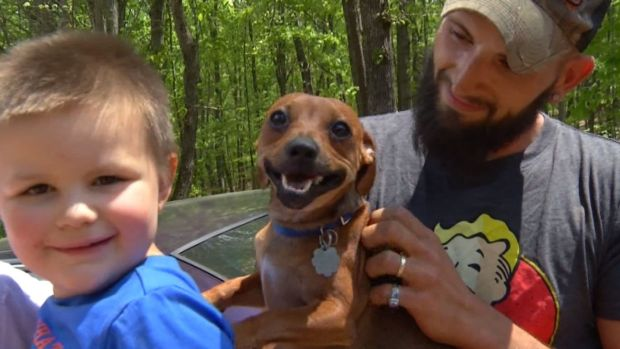 [NATL] Family Dog Stays With Lost Toddler in Woods Until Both Are Found