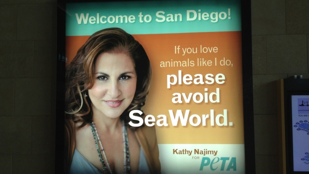[DGO] SD Airport Displays Ant-SeaWorld Ad