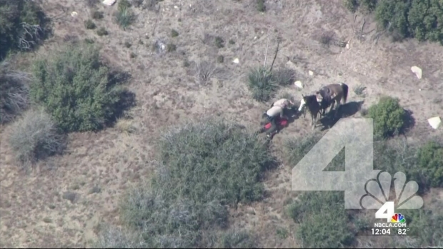 [LA] Deputies Named in Horseback Pursuit, Beating
