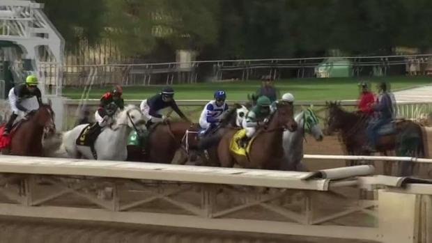 [LA] Santa Anita Planning to Close for Rain After Another Horse Death