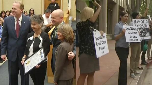[DGO]Council Honors SeaWorld despite Protest