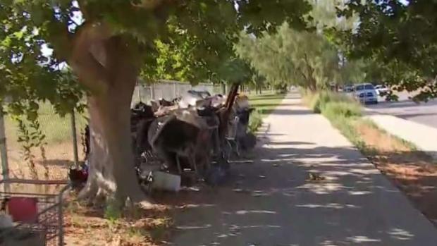 [LA] Shopping Carts Litter Lake Balboa Park in LA