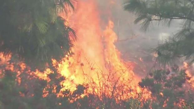 [LA] Stubborn Hollywood Hills Barham Fire Draws Major Response