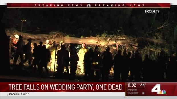 [LA - STRINGER] Tree Falls on Wedding Party, 1 Dead