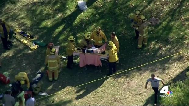 [LA] Tree Crashes Down on Children, Injures 8