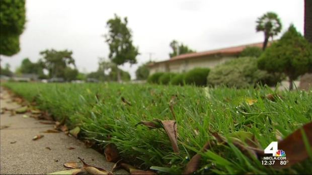 [LA] SoCal Couple Urged to Maintain Green Lawn Amidst Drought