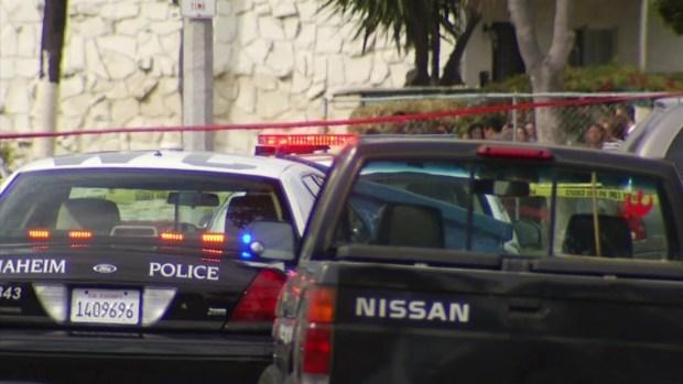 [LA] Anaheim Police Dog Begins Recovery