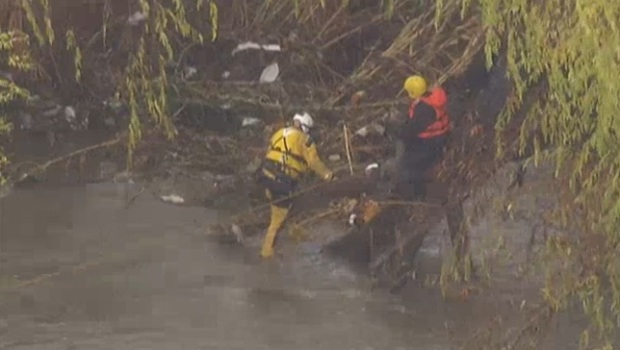 [LA] Dogs, Owner Saved From LA River