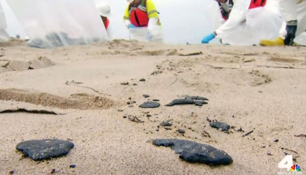 [NATL-LA GALLERY] Petroleum Glob Cleanup on South Bay Beaches