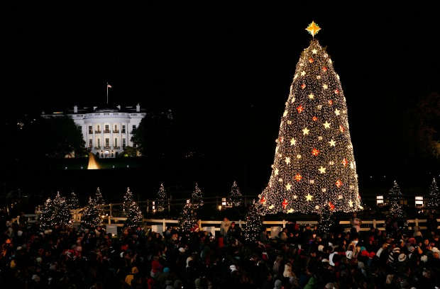 Obamas Light Up Ellipse With National Christmas Tree