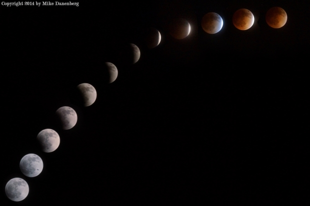 [LA GALLERY]Southern California Blood Moon Images