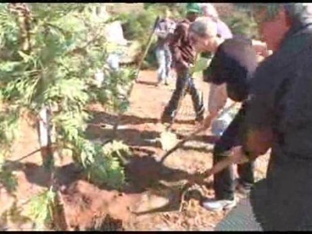 [LA] Meyer, Zalanick, LaBonge Plant Trees at Griffith Park