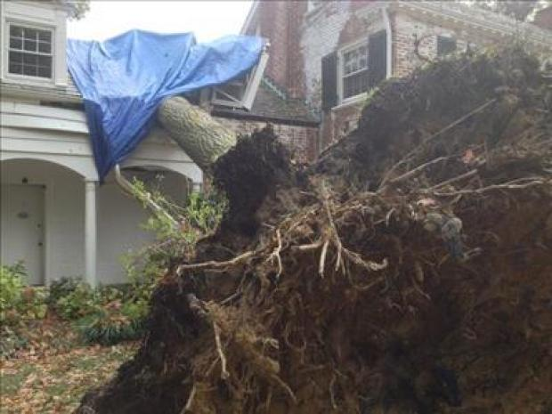 Viewer Photos: Sandy Hits D.C.