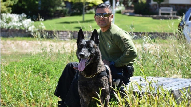 Honoring Our Police Dogs