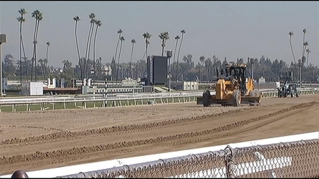 [LA] Moving Horses to Breeders' Cup Delayed by Sandy